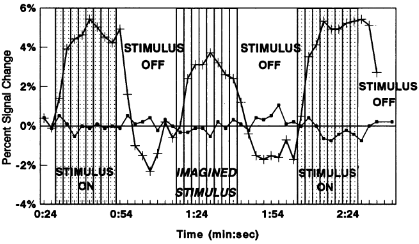 Changes in MRI signal intensity in different parts of the cortex, from Le Bihan, Turner, et al, 1993.